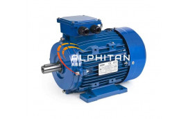 MOTEUR IE2 EG160L - 18.5KW 3000T 400/660 B3